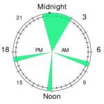 polyphasic everyman-3 sleeping schedule